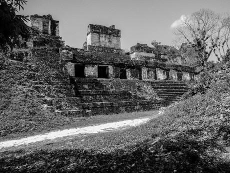 Tikal au Guatemala (20)