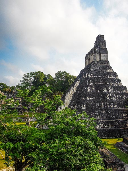 Tikal au Guatemala (9) copy