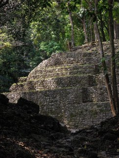 Yaxchilan au Mexique (2) copy