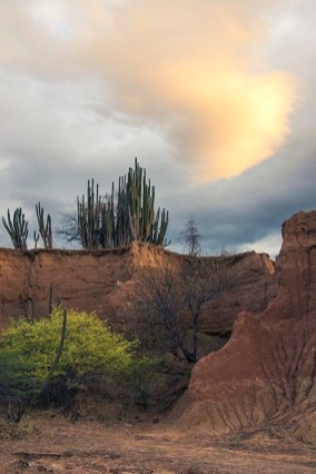 Desierto de la Tatacoa - Colombie (14) copy