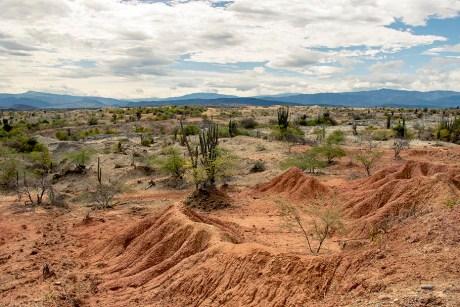 Desierto de la Tatacoa - Colombie (7)