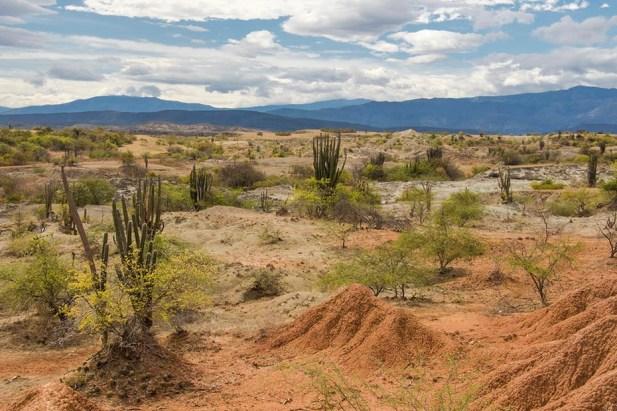 Desierto de la Tatacoa - Colombie (9)