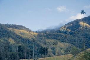 Salento - Colombie (1)