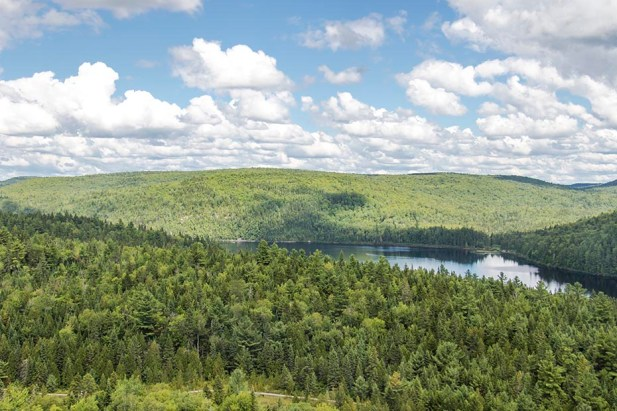 Parc de la Mauricie - Québec - Canada (3)