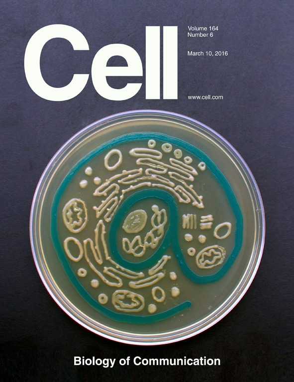 CELL_COVER-1