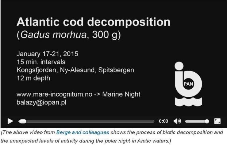 atlanntic_cod_decomposition