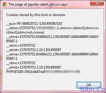 Jajodia-Saket.SJbn.Co Cookies Information