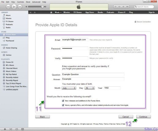Provide Apple ID Details - Fill the form -- Continue button