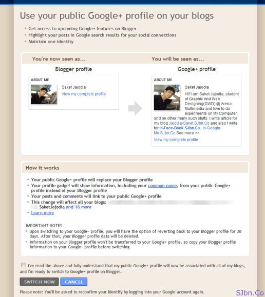 Use your public Google+ profile on your blogs