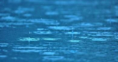 Raindrops Water Pool Rain Ripples  - Mylene2401 / Pixabay