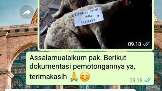 PAKET KAMBING AQIQAH DI PASAR MINGGU JAKARTA SELATAN