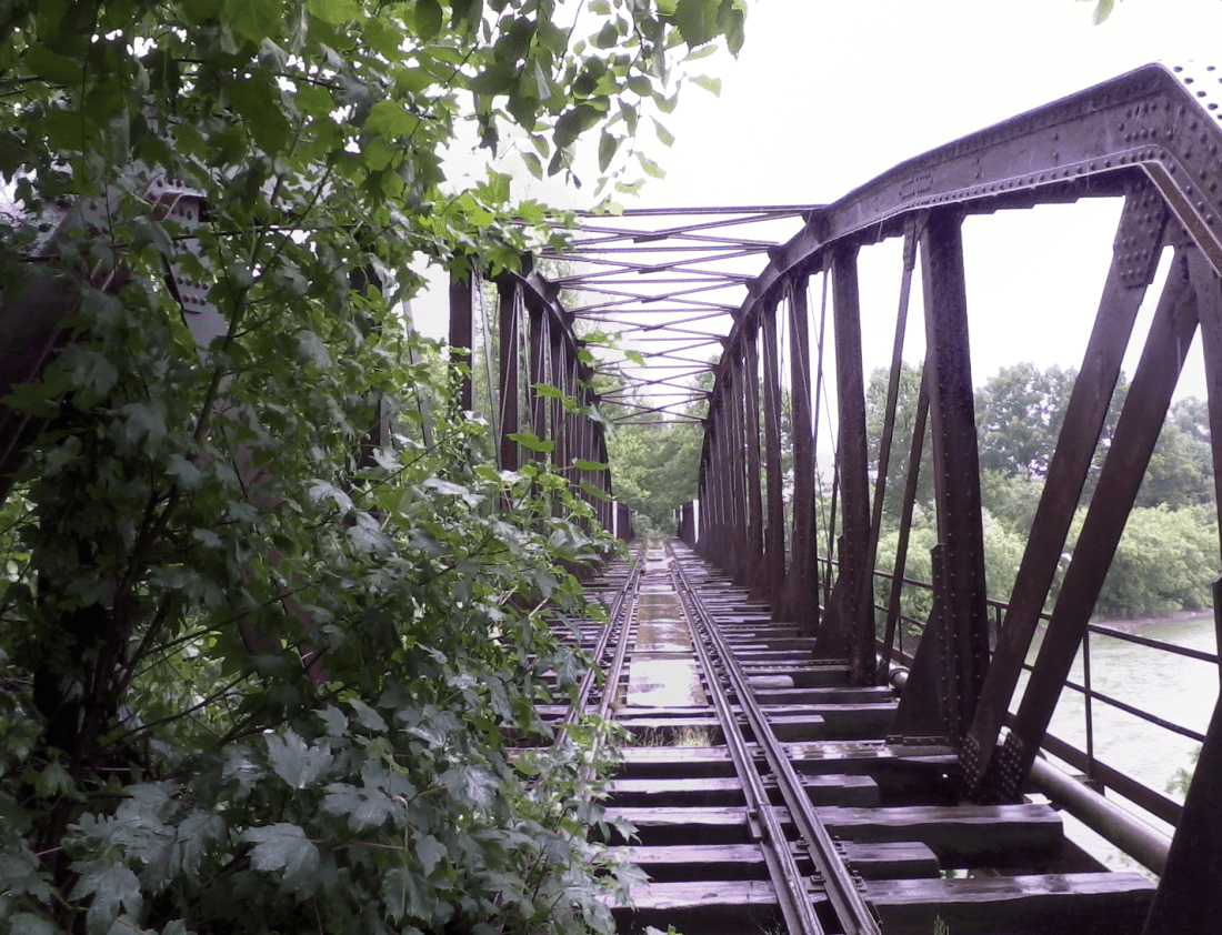 Drzewo i most