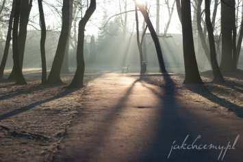 ławeczka w parku widok 3