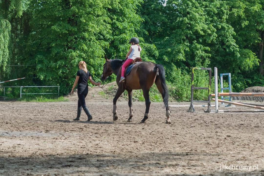 Konie i Mi ze schowaną twarzą