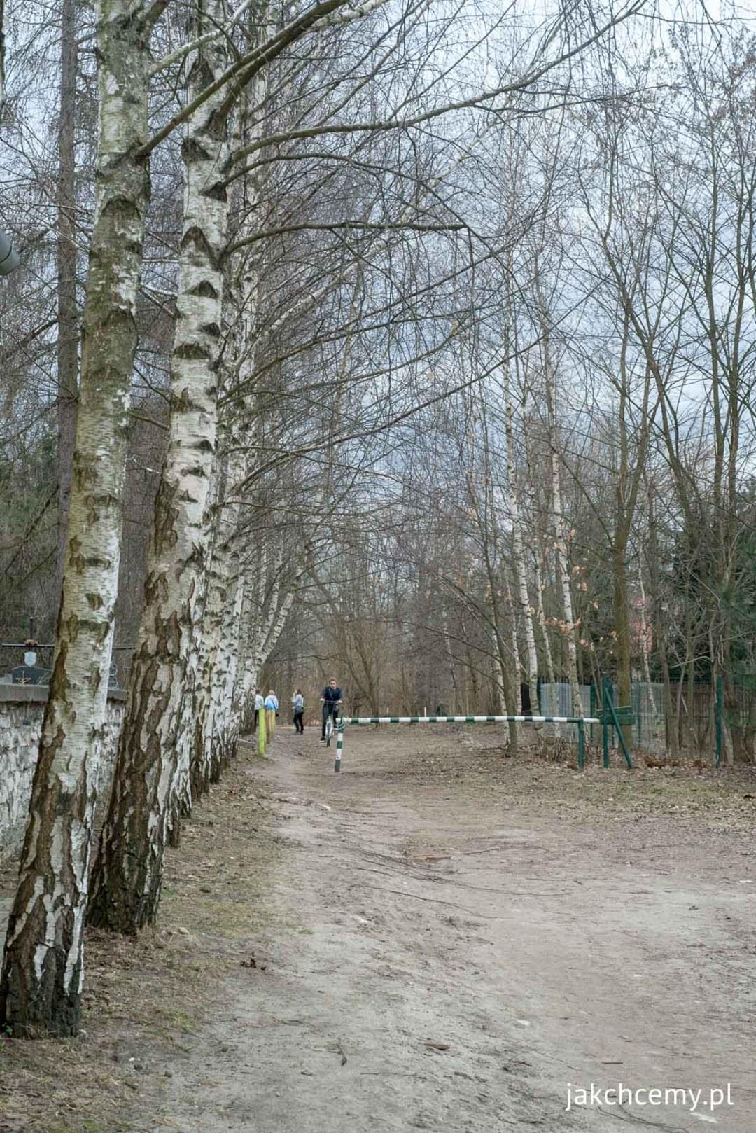 spacer-prawie-wiosenny-0015