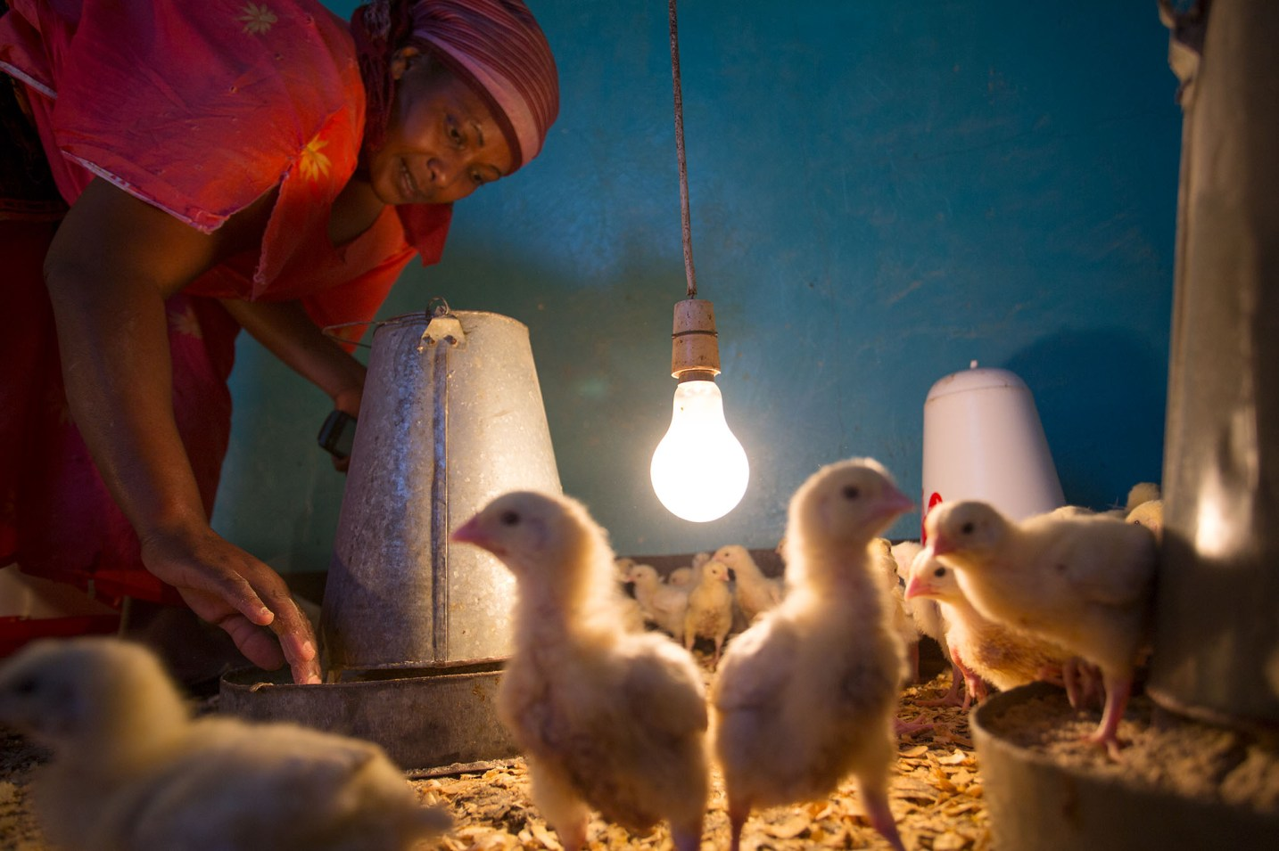 A woman raises chickens in Arusha, Tanzania.