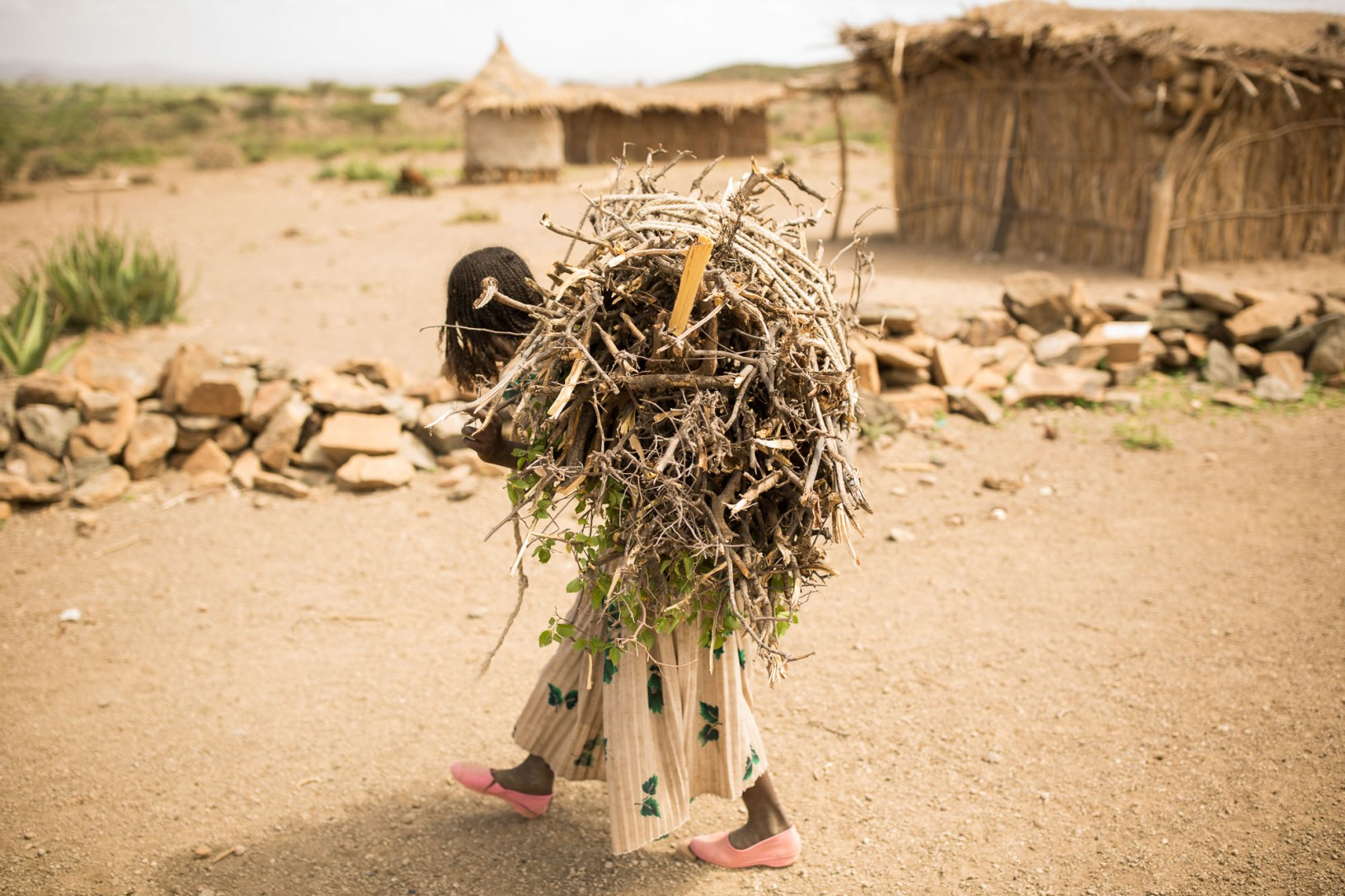 A girl carries a heavy load of firewood in Fentale, Ethiopia.