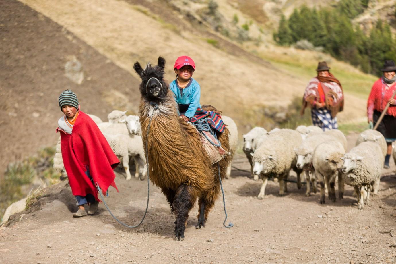 Joel (4) rides a llama through a village in Cotopaxi Province, Ecuador.