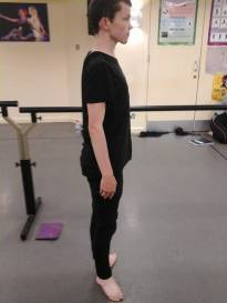 ballet-pole