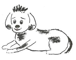 dog fish 8