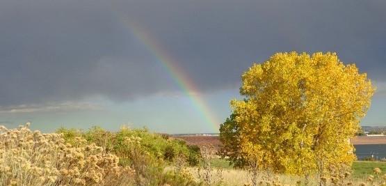 autumn-rainbow-600x450