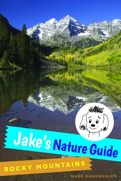 book, Jake's Nature Guide
