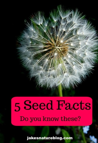 seed facts