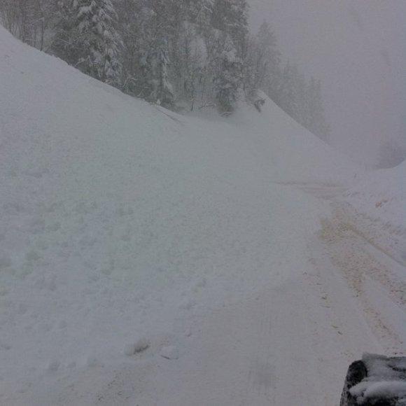 Yep. Avalanche. We're not going anywhere.