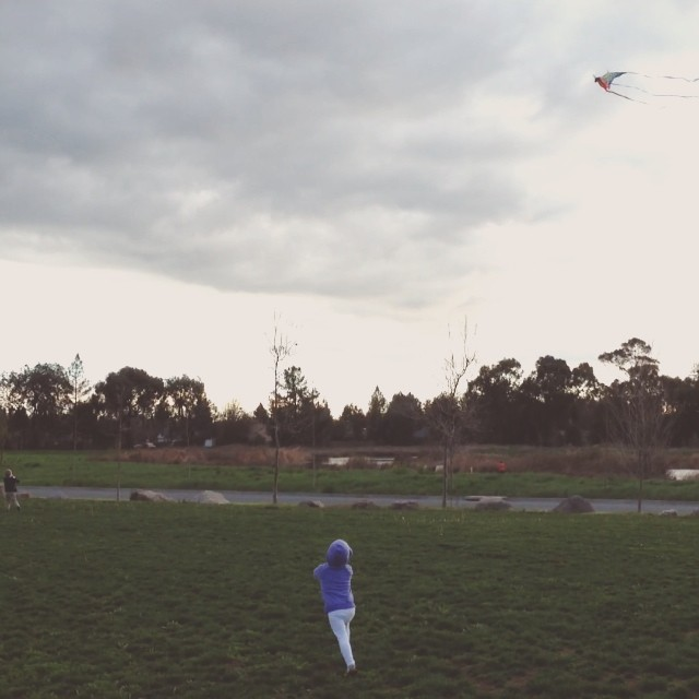 Perfect day to fly a kite...