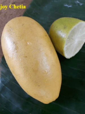One yellow ripe limon and a half of limon