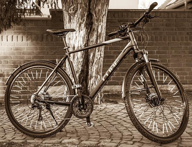 Co to jest rower trekkingowy? Zasady doboru roweru trekkingowego