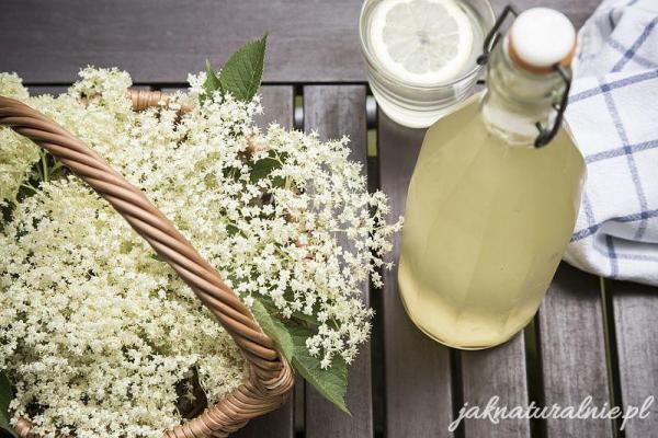 Syrop z kwiatów czarnego bzu- na odporność i lemoniadę