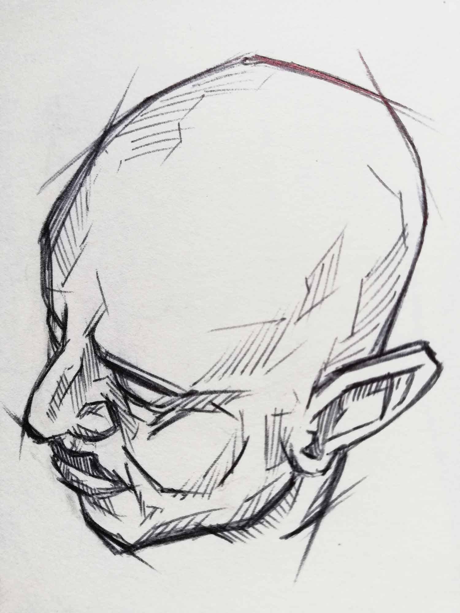 Tegning hoved