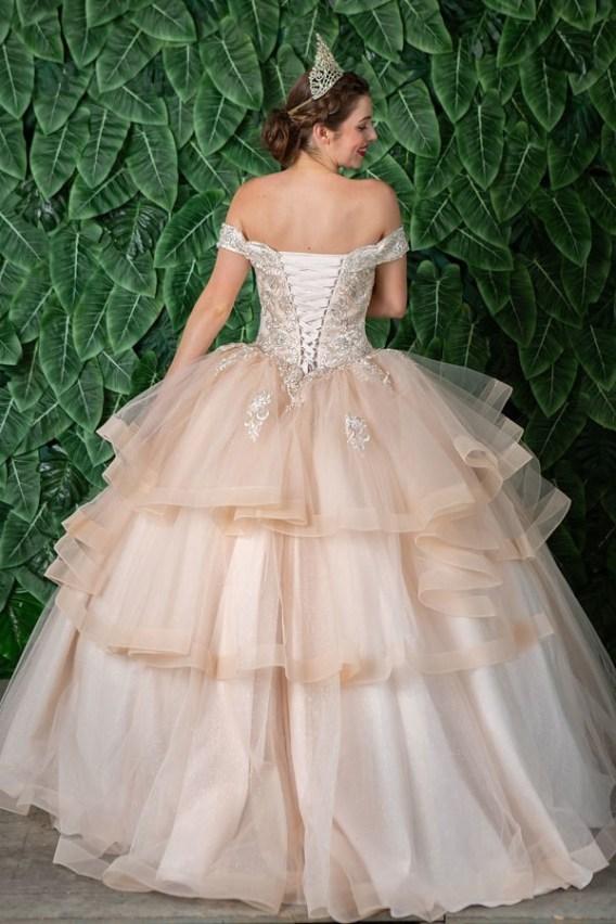 ball gowns quinceanera dress back