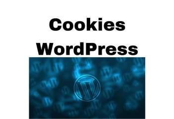 Cookies WordPress - jak ustawić komunikat o ciasteczkach