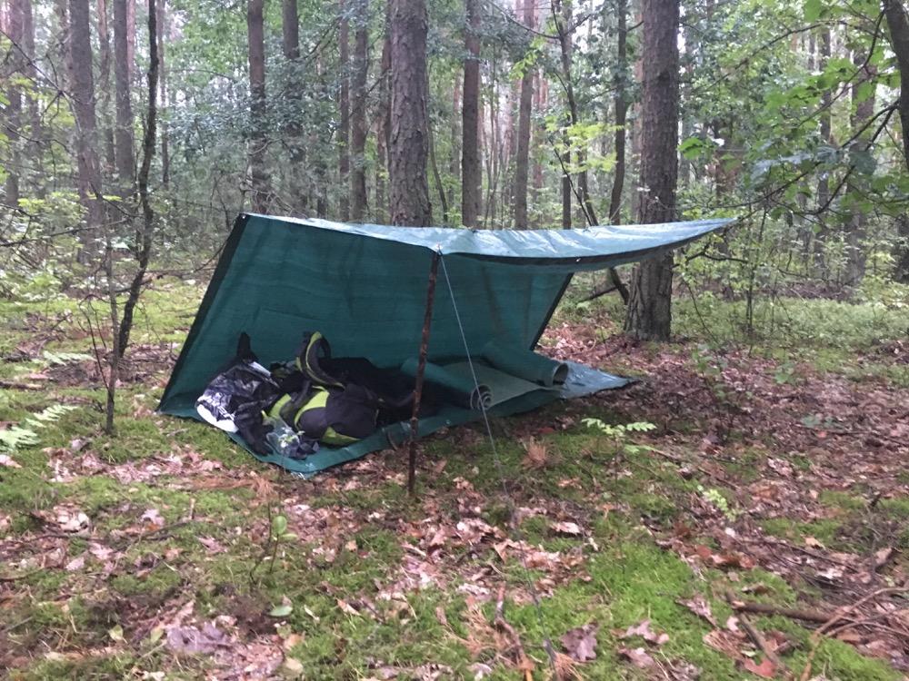 survival nocleg w lesie