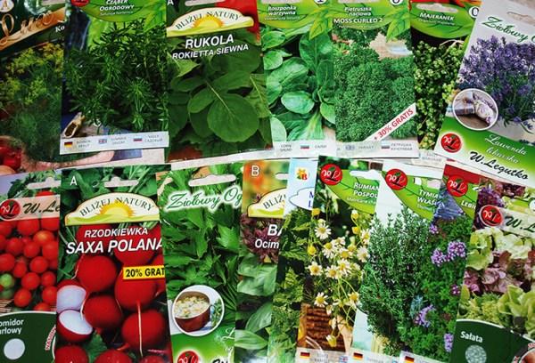Rośliny na balkon | Zioła