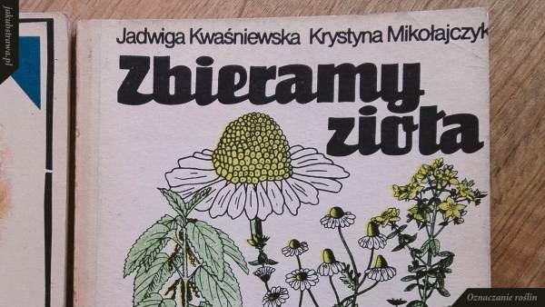 Zbieramy zioła | jakubstrawa.pl