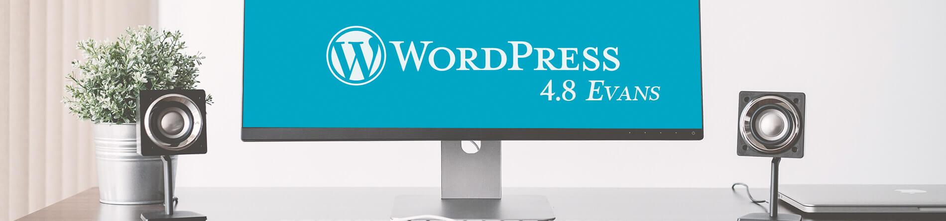 """WordPress 4.8 """"Evans"""" – więcej intuicyjności"""