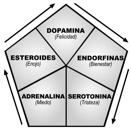 bioquimica de las emociones