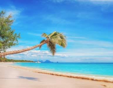 beach, the caribbean, paradise