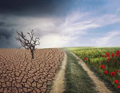 landscape, change, climate