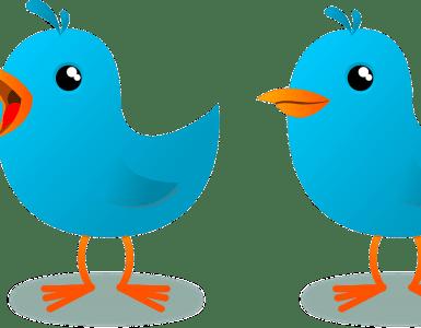 mascot, blue, bird
