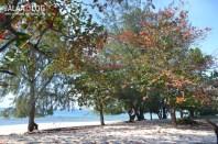 Pantai Purukambera