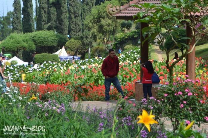Taman Bunga Selekta : Ajang Narsis