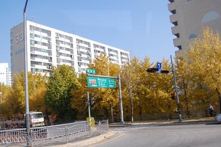 5hari 4malam di Seoul, Korea Selatan (2/6)