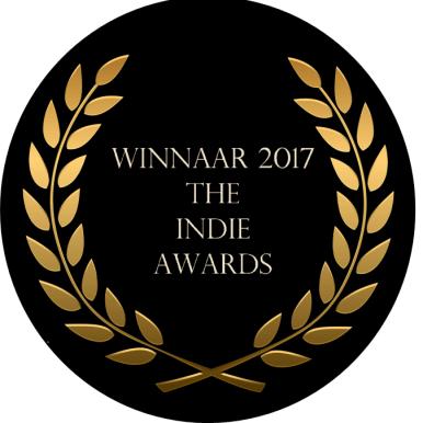The Indie Awards 2017 Tjeerd Langstraat
