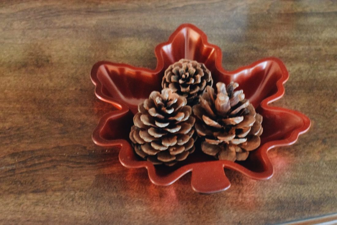 easy fall holiday diy and pinecones