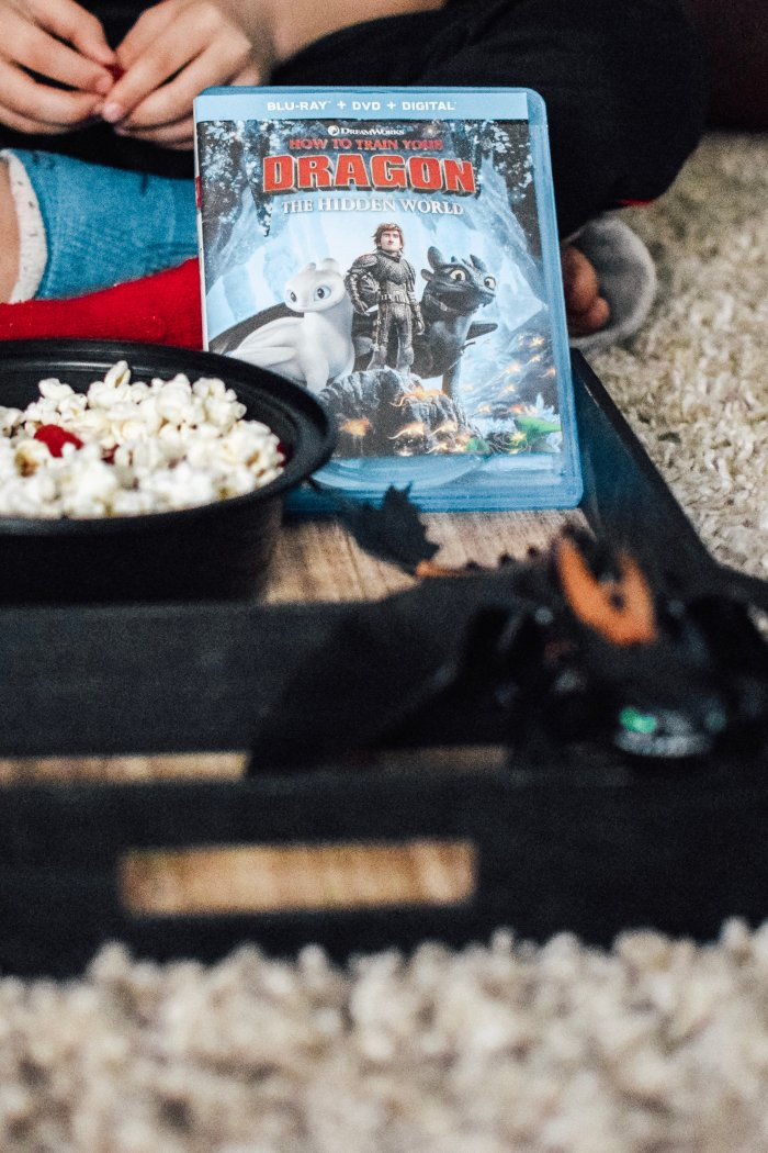 Simple DIY How To Train Your Dragon 3 Movie Night