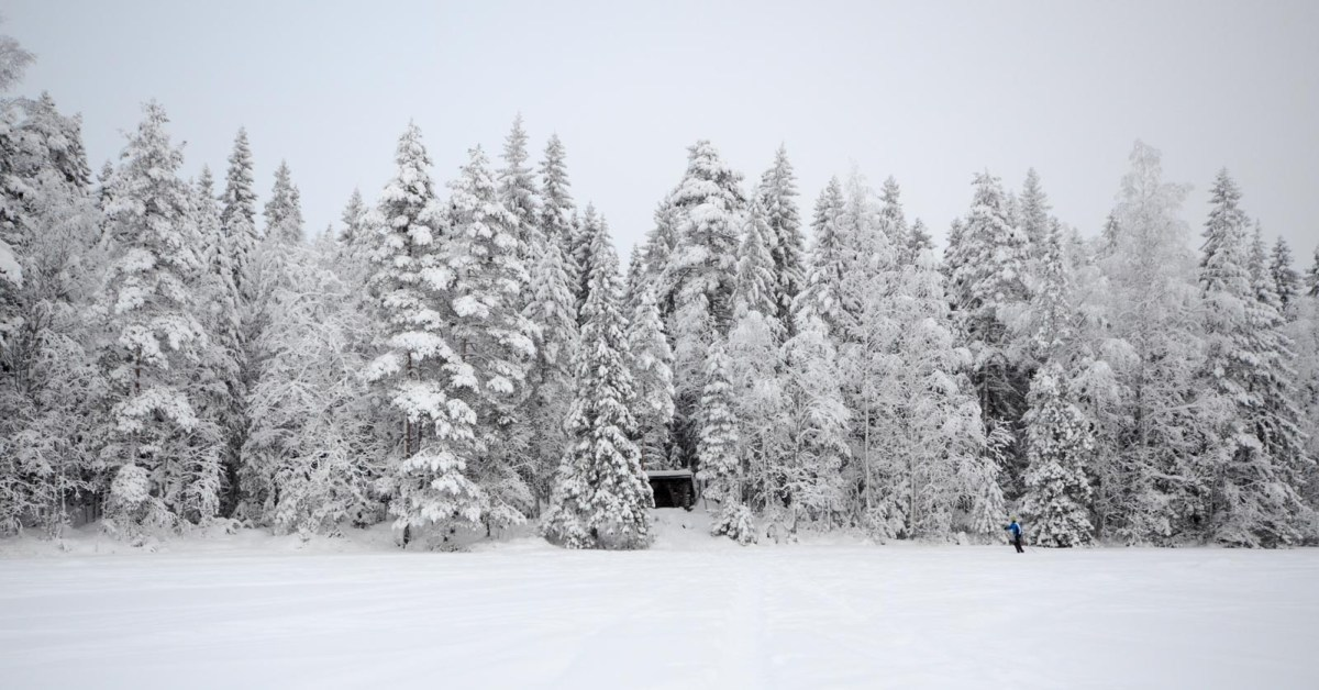Karhujärven laavu tammikuussa 2019. Kuva: Upe Nykänen